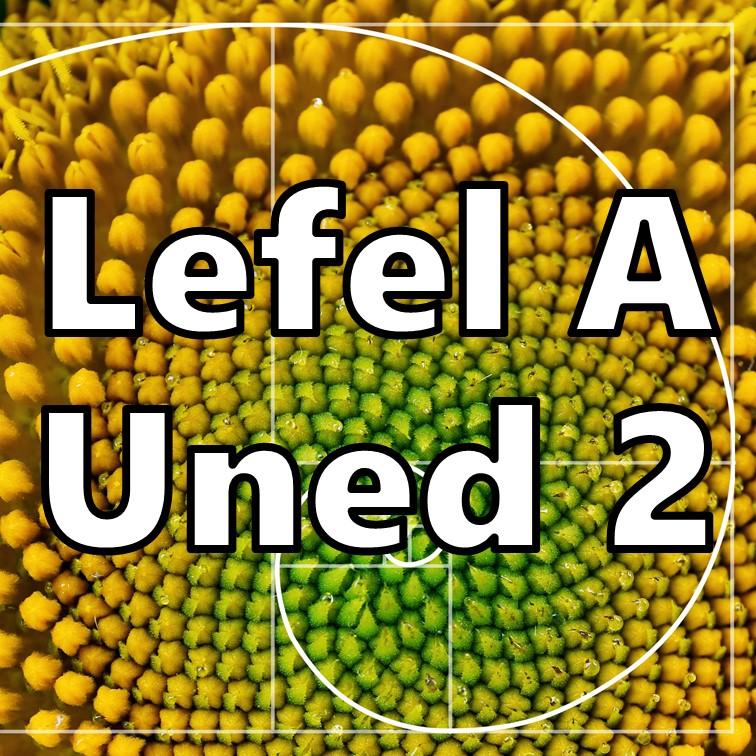 Uned 2