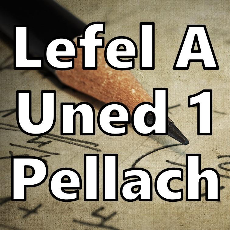 Uned 1 Pellach