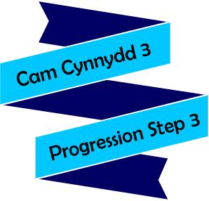 Course Image Cam Cynnydd 3
