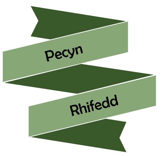 Rhifedd Blwyddyn 9