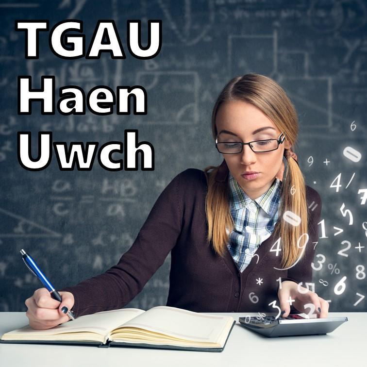 Mathemateg Haen Uwch TGAU