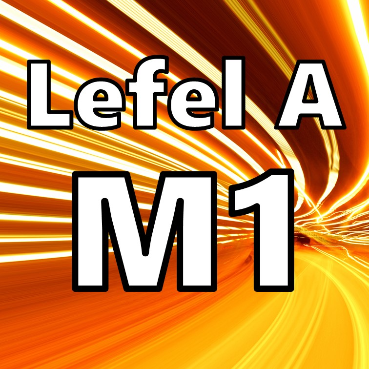 Mecaneg M1
