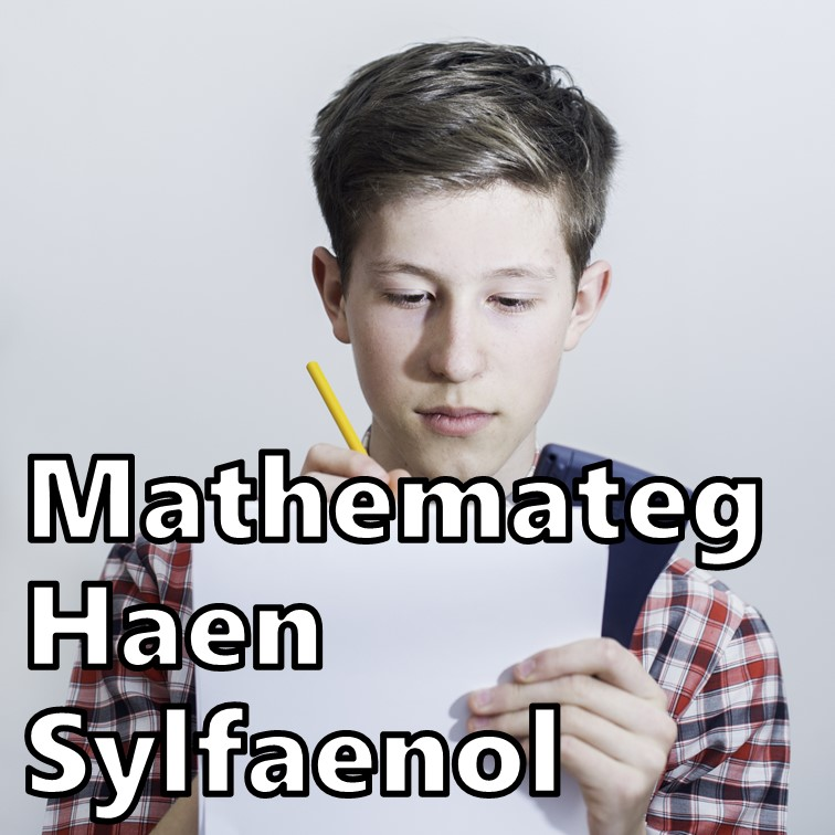 Mathemateg Haen Sylfaenol TGAU
